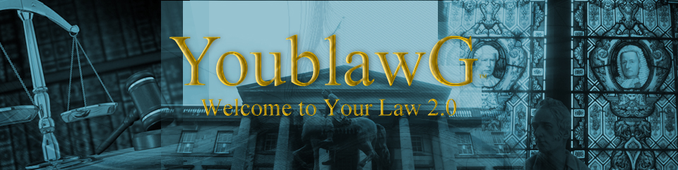 YoublawG: Welcome to Your Law 2.0